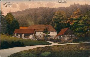 Ansichtskarte Eisenberg (Thüringen) Partie an der Froschmühle 1913