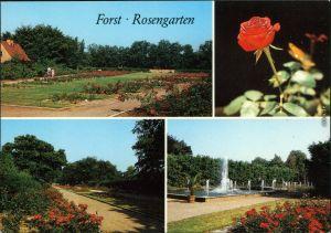 Ansichtskarte Forst (Lausitz) Baršć Rosengarten 1989