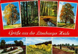 _Niedersachsen  Ansichten aus der Lüneburger Heide - Wald - Wiesen - Wege 1980
