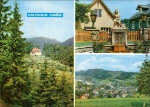 Ansichtskarte Steinach (Thüringen) Sanatorium, Rossenbrunnen, Übersicht 1970