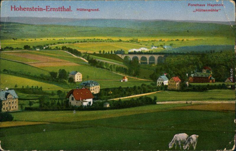 Hohenstein-Ernstthal Panorama-Ansicht mit Forsthaus Haynholz Hüttenmühle 1914