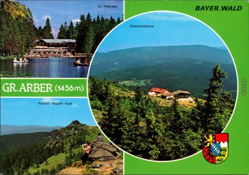 Ansichtskarte Bayerisch Eisenstein Großer Arber, Arbersee 1980