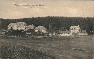Ansichtskarte Elgershausen-Schauenburg Waldhof 1914