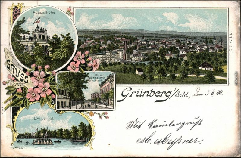 Grünberg Schlesien Zielona Góra Litho Wilhelmstraße Louisental Augusthöhe 1900