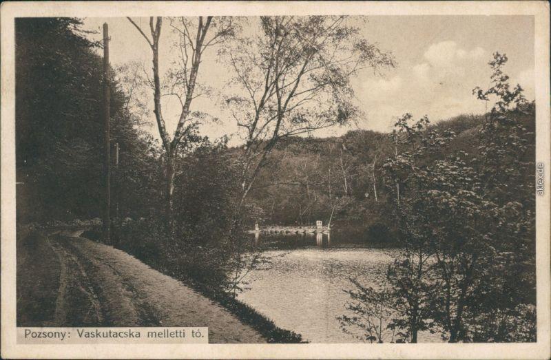 Ansichtskarte Pressburg Bratislava Flußpartie 1911