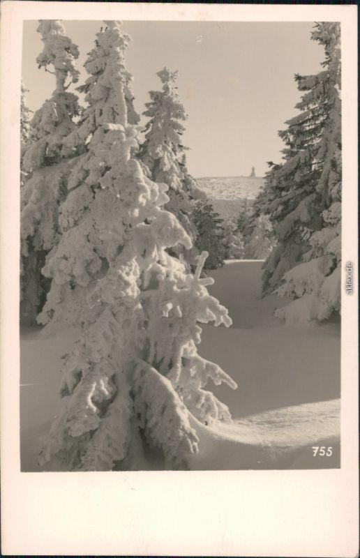Freudenthal (Schlesien) Bruntál Altvatergebirge / Hrubý Jeseník Winter 1932