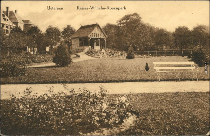 Ansichtskarte Uetersen Partie im Kaiser Wilhelm Rosenpark 1922