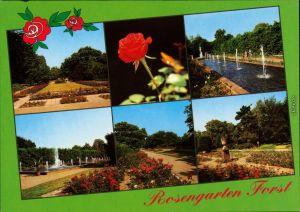 Ansichtskarte Forst (Lausitz) Baršć Rosengarten 1995