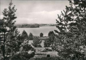 Ansichtskarte Kagar-Rheinsberg Braminsee 1972