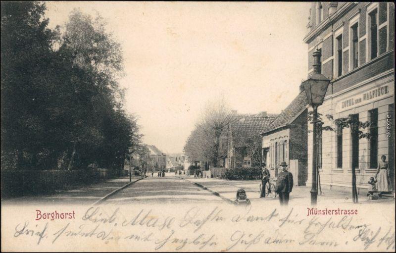 Ansichtskarte Borghorst-Steinfurt Münsterstraße 1904