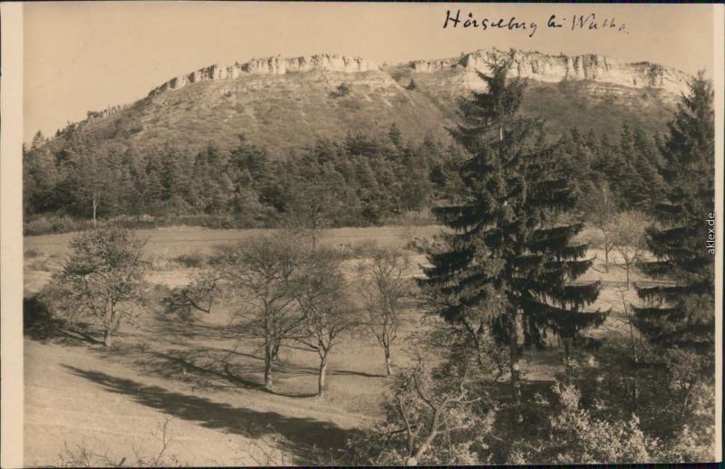 Ansichtskarte Hörselberg Großer Hörselberg 1932