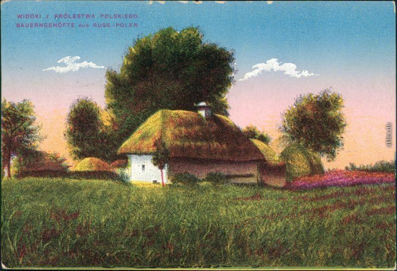 Ansichtskarte Polen (Allgemein) Bauerngehöfte - Königreich Polen 1916