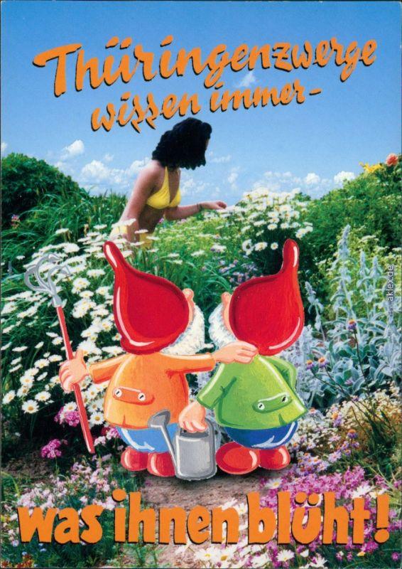 Ansichtskarte  Thüringenzwerge - Frau im Bikini beim Blumen pflücken 2001