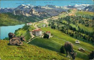 Küssnacht am Rigi Rigi Staffel (1607 m.) u. Rigi Kulm (1800 m.) 1911