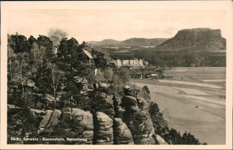 Struppen (Sächsische Schweiz) Kammweg, Rauenstein (Sächsische Schweiz) 1954