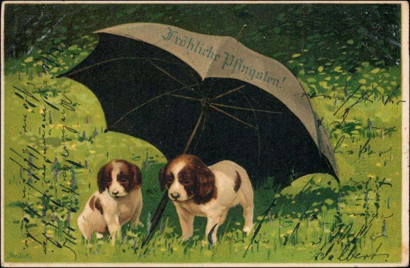 Ansichtskarte  Künstlerkarte Hunde unter dem Regenschirm - Pfingsten 1904