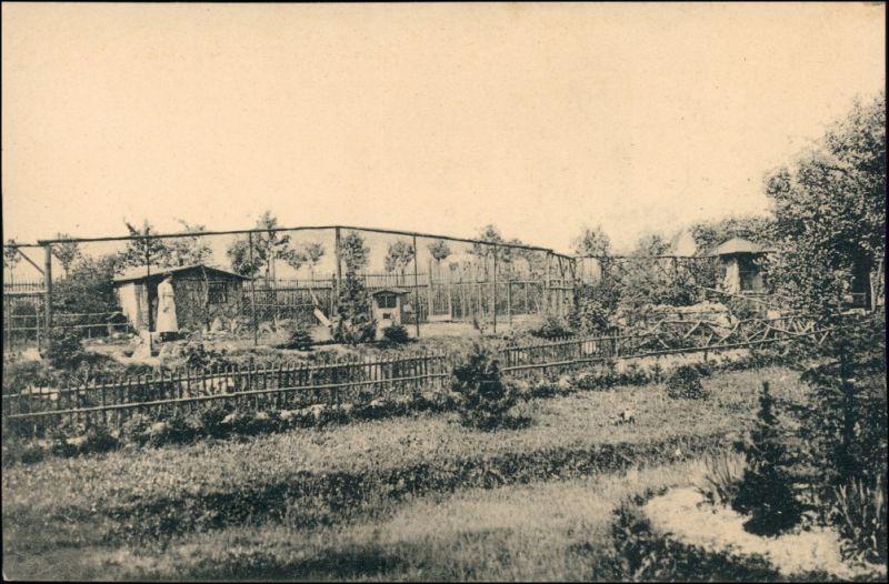 Ansichtskarte Freiberg (Sachsen) Sommerfrische Waldcafe - Wildpark 1911