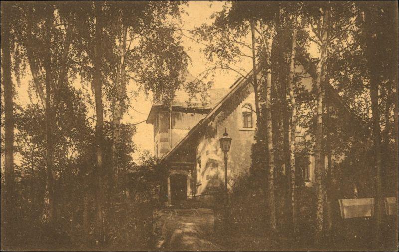 Ansichtskarte Coswig Sachsen Parkhaus Heilstätte Lindenhof 1917