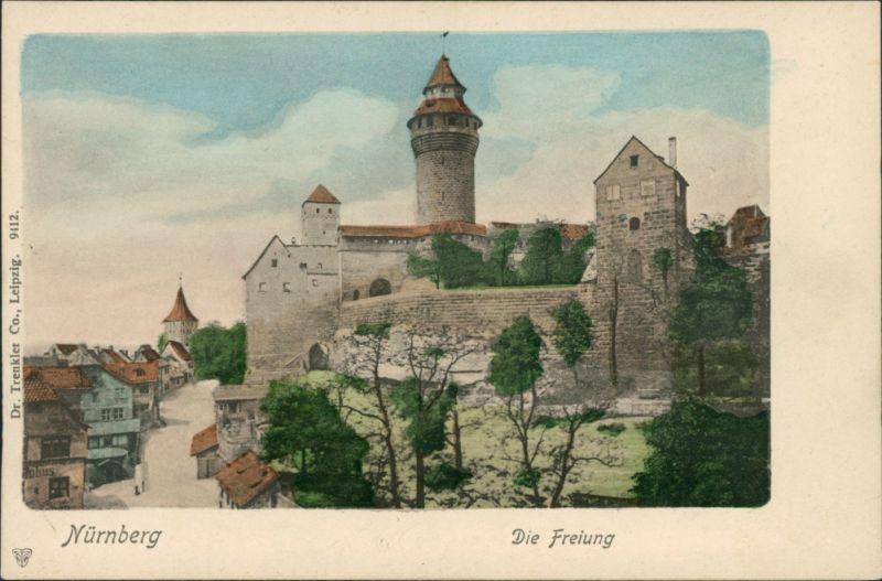 Ansichtskarte Nürnberg Straßenpartie - Die Freiung 1908