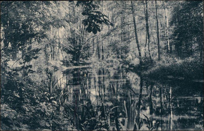 Ansichtskarte Bad Liebenwerda Partie an der Elster 1913