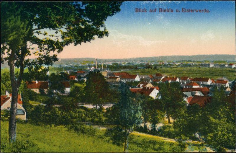 Ansichtskarte Biehla-Elsterwerda Wikow Blick auf die Stadt 1916