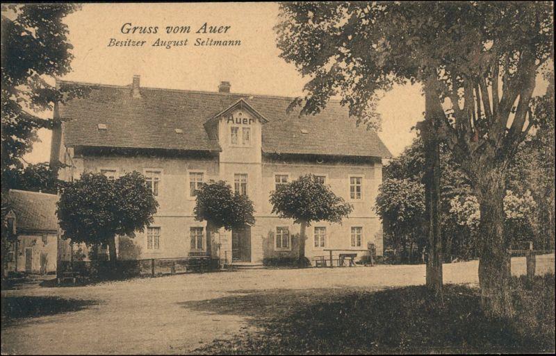Ansichtskarte Auer-Moritzburg Waldgasthof