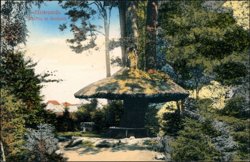 Ansichtskarte Elsterwerda Wikow Partie am Pilz im Stadtpark 1909