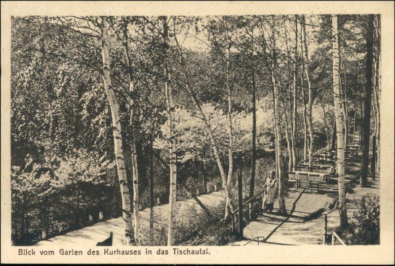 Zschopau Blick vom Garten des Kurhauses Tischautal - Finkenkrug 1912