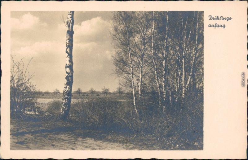 Ansichtskarte  Stimmungsbild: Frühling 1930
