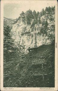 Ansichtskarte Altenberg an der Rax Wachthüttelkamm 1922