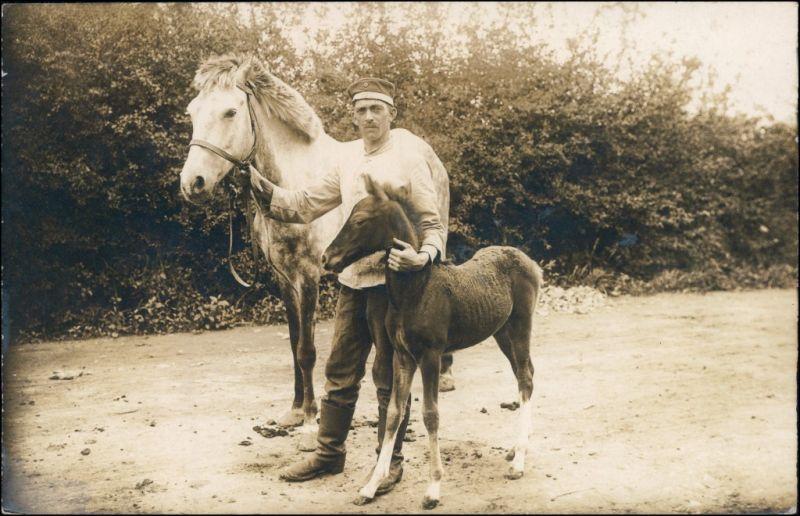 Ansichtskarte  Soldat - Stute und Fohlen 1918