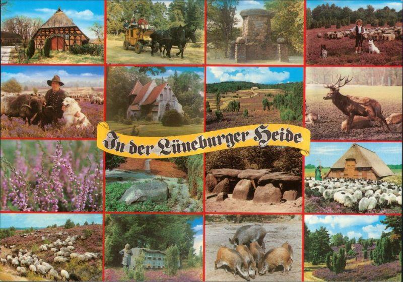 Ansichtskarte .Niedersachsen Lüneburger Heide 1995