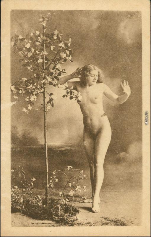 Ansichtskarte  junge Frau am Bäumchen Erotik Erotika Nude 1920