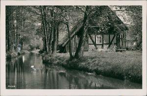 Lübben (Spreewald) Lubin (Błota) Kanal im Spreewald mit Fachwerkhaus g1956