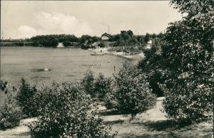 Ansichtskarte Sandersdorf-Brehna Strandbad 1964