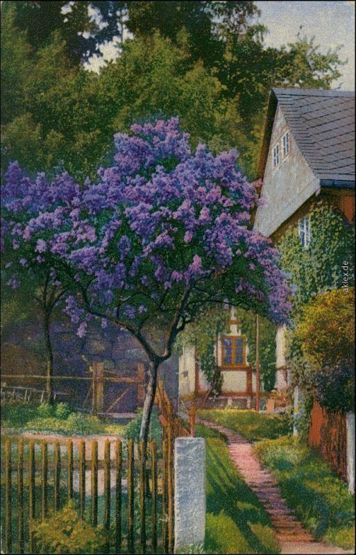 Ansichtskarte  Stimmungsbild, blühender Garten 1918