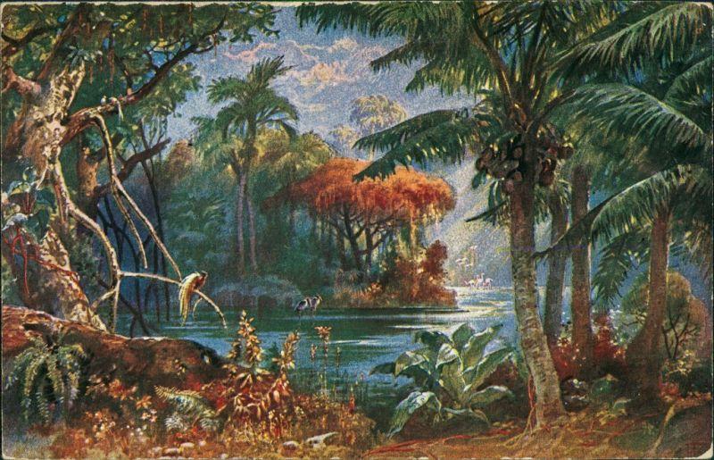 Postcard Kamerun Landschaft in Kamerun 1915