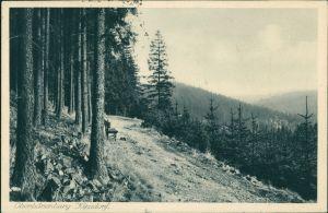Oberbärenburg-Altenberg (Erzgebirge) Panorama-Ansicht vom Wald aus 1930