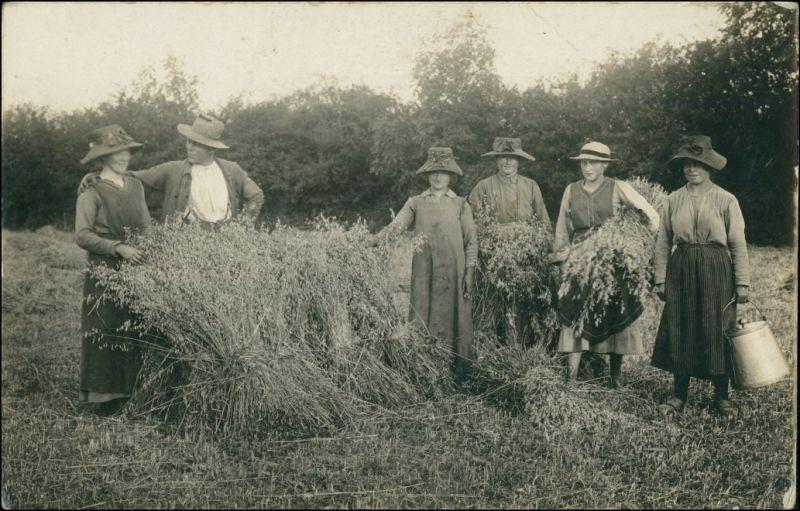 Foto  Bauer, Bäuerin und Erntehelfer bei der Ernte 1915 Privatfoto