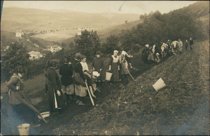 Foto  Bäuerinnen am Hang bei der Feldarbeit 1911 Privatfoto