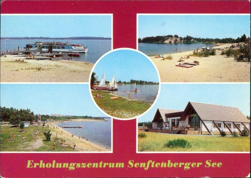 Senftenberg (Niederlausitz) Erholungszentrum Senftenberger See: Strand g1985
