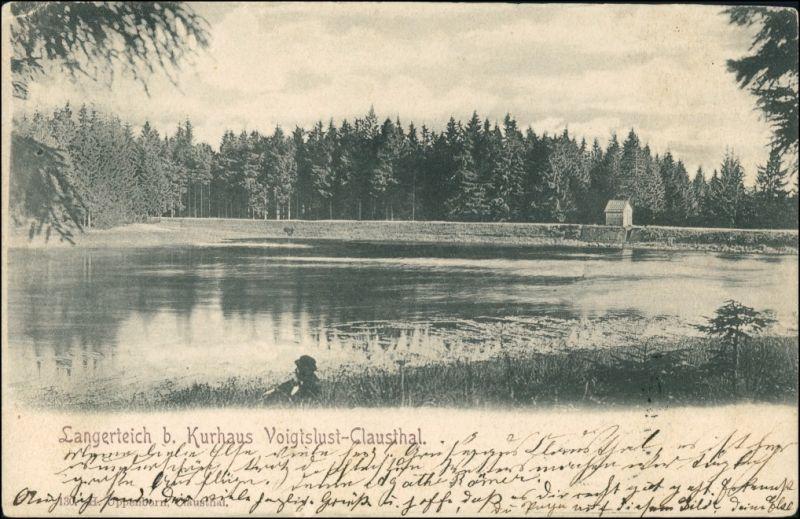 Ansichtskarte Altenau-Clausthal-Zellerfeld Voigtslust Langerteich 1902