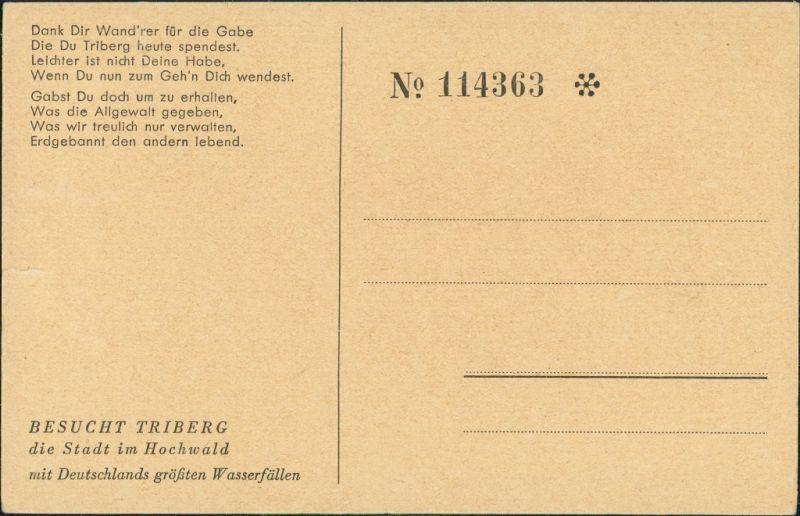 Ansichtskarte Triberg im Schwarzwald Künstleransichtskarte Schwarzwald 1928 1