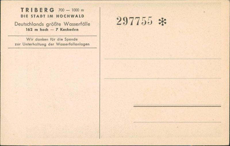 Ansichtskarte Triberg im Schwarzwald Künstleransichtskarte Schwarzwald Eintritskarte 1928 1