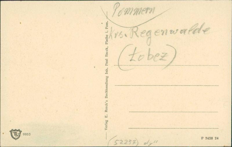Postcard Plathe Płoty Blücherschlossruine 1917 1