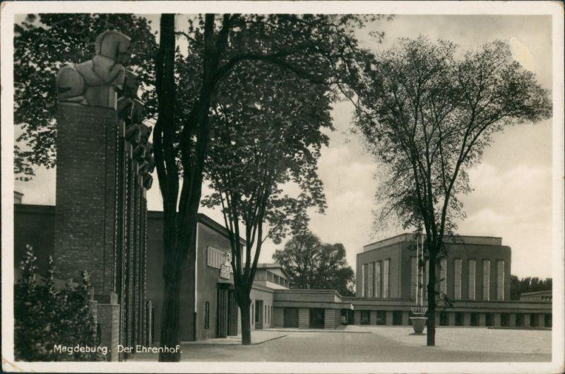 Ansichtskarte Werder-Magdeburg Partie im Ehrenhof 1936