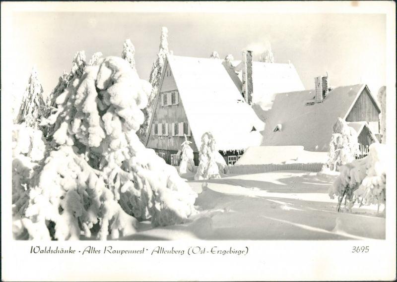 Altenberg (Erzgebirge) Winterlandschaft Waldschänke Altes Raupennest 1983