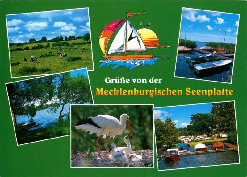.Mecklenburg-Vorpommern Grüße von der Mecklenburgische Seenplatte, Storch, Kleinboote, Kühe auf Weide 2000