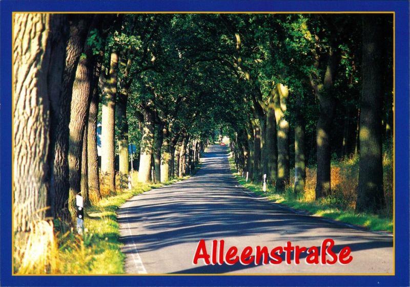 Ansichtskarte .Mecklenburg-Vorpommern Alleenstraße in Mecklenburg 2000