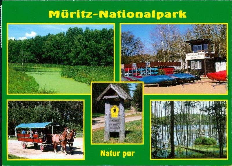 Müritz Nationalpark - Teuch mit Uferbereich, Kanustation, Kutsche 1998 0